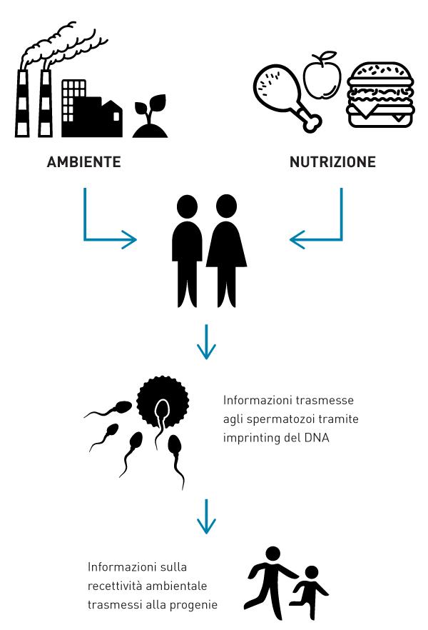 fisiopatologia riproduttiva